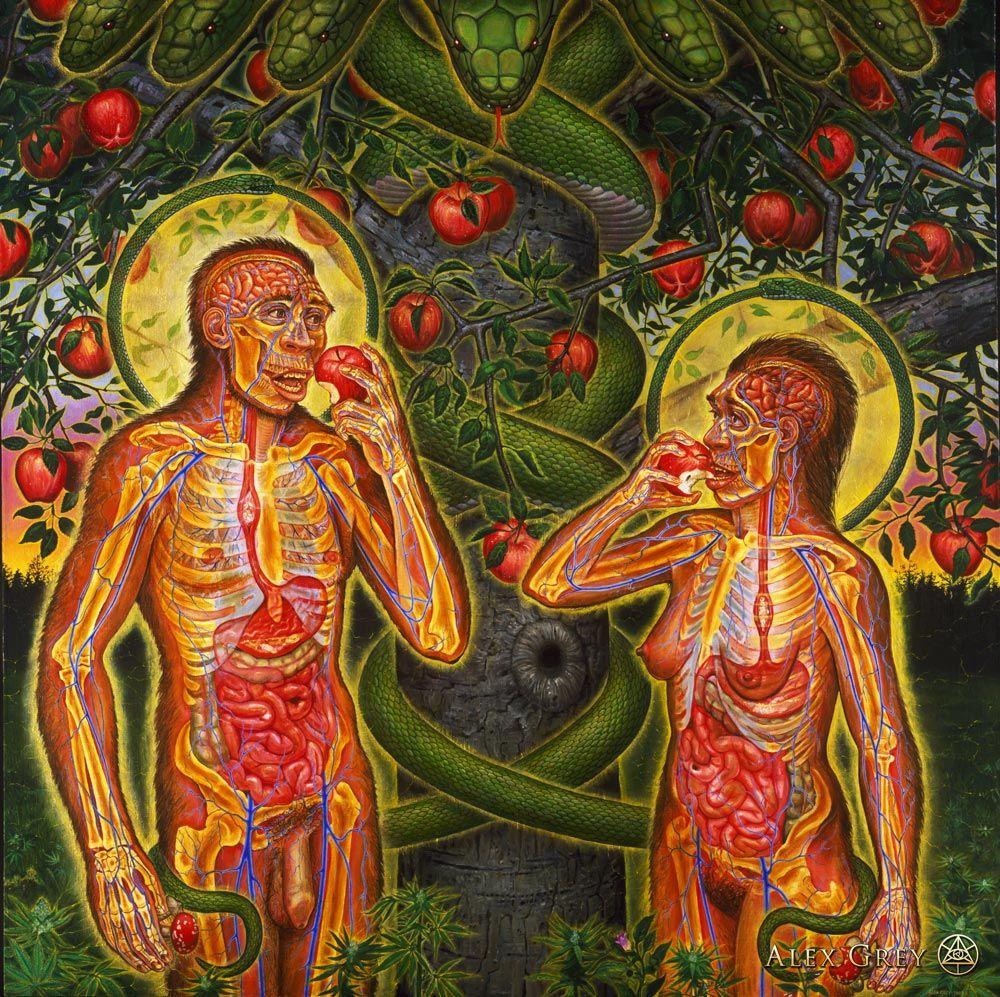 Almost Awakened: 045: Adam & Eve And Conscious Altering Tools