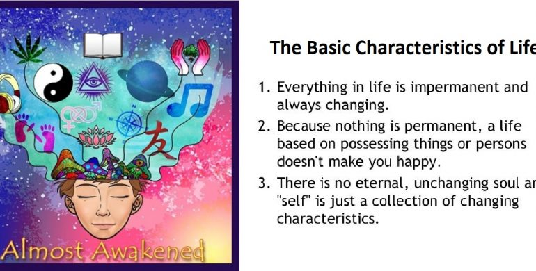 Almost Awakened: 078: Buddhism For Beginners Part 7 – The Basic Characteristics of Life